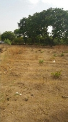 Land Measuring 5,000 Sqm, Fenced Round With Gate, By The Road Side, Title: C Of O For Commercial Use Commercial Land for Sale Maitama Abuja Vetra  Property