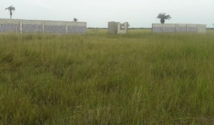 Best Land Offer In Ibeju Lekki - 10mins Drive After Dangote Refinery,  Residential Land for Sale Ibeju Lekki Lagos Vetra  Property
