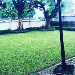 Massive Size Five(5) Bed Semi-detached Houses With Private Garden Space Semi-Detached Duplex for Lease Ikoyi Lagos Vetra  Property
