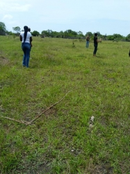 Land For Sale At Asaba  Residential Land for Sale Asaba Delta Vetra  Property