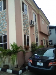 Nice And Standard Well Maintain Fully Detarch 5bedroom Duplex With One Room Bq 5 bedroom Detached Duplex for Sale Lekki Lagos Vetra  Property