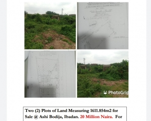 A Standard 2 Plots Of Land Measuring 1611.854sqm For Sale @ Ashi Bodija Mixed Land for Sale Ibadan Oyo Vetra  Property