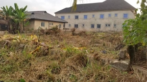 100 By 100 Land For Sale Along The Tired Road In Ogunwunyi Off Ugbor Gra Mixed Land for Sale Oredo Edo Vetra  Property