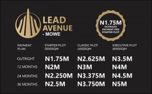 Affordable Plots Of Land Residential Land for Sale Obafemi Owode Ogun Vetra  Property