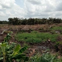 Plots Of Land  Mixed Land for Sale Okigwe Imo Vetra  Property