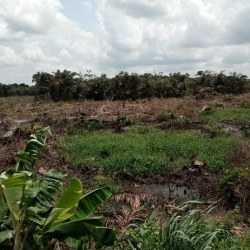 Land For Sale In Ido Residential Land for Sale Ido Oyo Vetra  Property