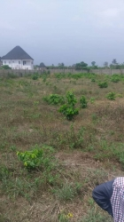 Cheap Plots Of Land In Benin City Available For Sale   Land for Sale Oredo Edo Vetra  Property