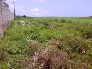2 Plots For Sale In Iponri Surulere Mixed Land for Sale Surulere Lagos Vetra  Property