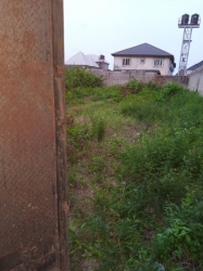 Half Plot Of Land At Ago Okota Mixed Land for Sale Isolo Lagos Vetra  Property