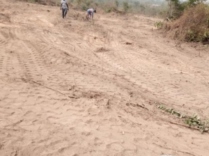 Residential Land Residential Land for Sale Ido Oyo Vetra  Property