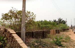 5 Plots Of Land Mixed Land for Sale Oredo Edo Vetra  Property